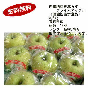 【送料無料】王林 内臓脂肪を減らす プライムアップル 青森県産 約5kg 14玉入 ランク 特撰/特A★1部、北海道、沖縄のみ別途送料が必要となる場合があります