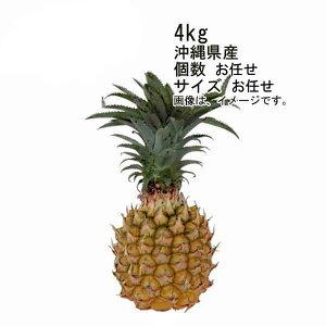 【送料無料】スナックパイン ボゴールパイン 沖縄産 約4kg 6玉入 サイズ M★一部、北海道、沖縄のみ別途送料が必要となる場合があります
