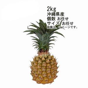【送料無料】スナックパイン ボゴールパイン 沖縄産 約2kg 3玉入 サイズ M★一部、北海道、沖縄のみ別途送料が必要となる場合があります
