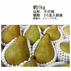 【送料無料】洋梨 (品種 オーロラその他) 山形県 その他 約1kg 3-5玉前後★一部、北海道、沖縄のみ別途送料が必要となる場合があります