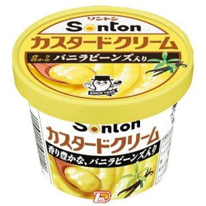 【1ケース】カスタードクリーム ソントン 135g 6個入