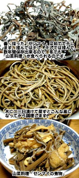 【送料無料】秋田県産極太干しぜんまい500g山菜の王様ともいわれる最高級の干しぜんまいです【秋田県産】【乾燥ぜんまい】