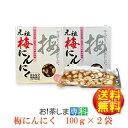 梅辰株式会社 梅にんにく100g×2袋【ラッキーシール対応】