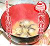 大和淡水蛤汁 (100 套)