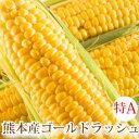 とうもろこし ゴールドラッシュ トウモロコシ 熊本県産 送料無料 10本〜13本 約4.0kg スイートコーン 国産 朝採れ 産…