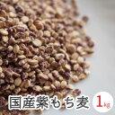 もち麦 国産 送料無料 1kg (500g x2) 愛媛県産 無添加 ダイシモチ 紫もち麦 麦ご飯 国産 大麦 雑穀 国産雑穀 メール便…