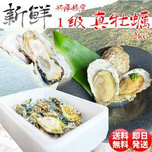 牡蠣 冷凍 2kg カキ かき 貝 かい 2021年 新物 殻付き 真牡蠣 瀬戸内産 2キロ 産地直送 バーベキュー BBQ 誕生日 プレゼント ギフト