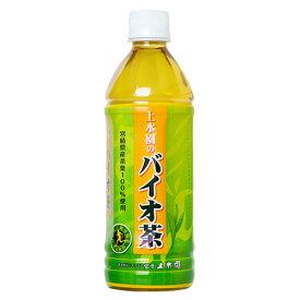 【送料無料】バイオ茶 500ml×24本入 南日本酪農協同 デーリィ 【まとめ買い】