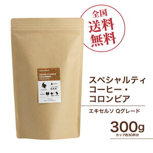 珈琲豆[300g] コロンビア エキセルソ Qグレード スペシャルティ コーヒー豆 自家焙煎 ギフト 送料無料
