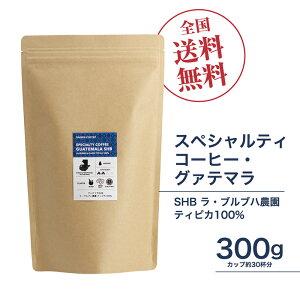 珈琲豆[300g]グァテマラSHB ラ・ブルブハ農園 ティピカ100% ガテマラ スペシャルティコーヒー豆 自家焙煎 ギフト 送料無料