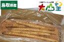 送料無料 ねばりっこ 4〜5本入り 5kg 長芋 長いも いも 芋 鳥取 鳥取県産 野菜 お取り寄せグルメ