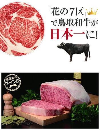 鳥取和牛フィレステーキヒレ500g和牛黒毛和牛牛肉A5ヒレ肉A5ランク牛ヒレステーキ和牛ステーキギフト内祝い牛お中元中元御中元贈答