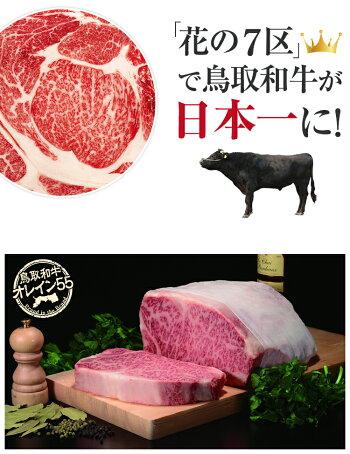 鳥取和牛オレイン55サーロインステーキ250g×2枚和牛オレイン55オレイン牛和牛サーロインステーキお肉ギフト内祝お中元中元御中元牛贈答