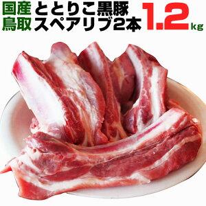★豚 スペアリブ 2本入り 1.2kg以上 ととりこ 黒豚 BBQ バーベキュー アウトドア キャンプ 豚肉 ぶた肉 豚 国産 送料無料 当店が作るブランド黒豚銘柄です!