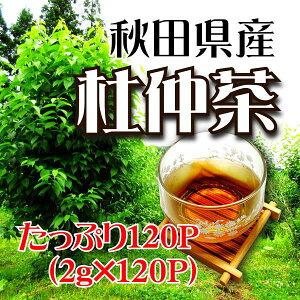 杜仲茶/2g×120パック/ご贈答/お歳暮/お取り寄せ