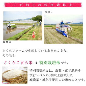 【令和元年度産】【送料無料】あきたこまち/特別栽培米さくらこまち米/精米/5kg/減農薬・減化学肥料/特別栽培米/おにぎりに最適