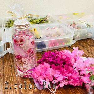 ハーバリウム2本セット/植物標本/ドライフラワー/プリザーブドフラワー/贈り物/ギフト/母の日