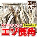 【ご予約】メール便送料無料 犬【形状おまかせ】国産 天然 鹿角(エゾ鹿) 1本 サイズ:L(約20cm〜25cm) 鹿の角 犬 鹿【…