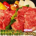 送料無料!お試し 国産牛 焼肉 セット 国産 3点味付け(国産牛 ロース、国産牛 ハラミ、和牛切り落とし)牛すじ煮込み…
