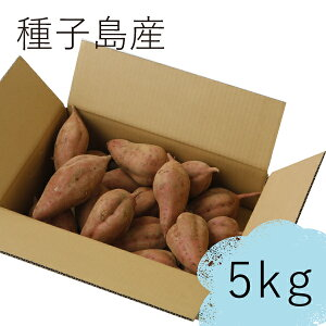 【送料無料】種子島産熟成安納いも(Mサイズ) 5kg 安納芋 さつまいも 生芋 青果 ギフト特別価格