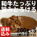 黒毛和牛専門店の牛カレーセット 200g×5(1人前×5)【送料込】