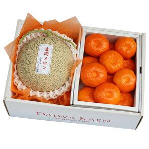 【送料無料】 赤肉メロン 早生みかん 高級 フルーツ 果物 ギフト 自家用 プレゼント [お供え] [お見舞い] [お祝い] [御礼] [内祝い] [贈り物]