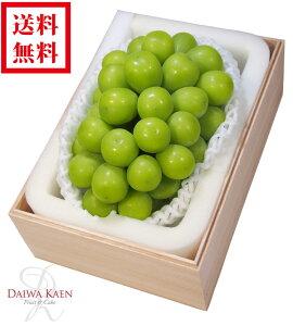 【送料無料】 長野産 シャインマスカット 約700g 高級 果物 フルーツ ギフト プレゼント 大粒 木箱 [お供え] [お祝い] [お見舞い] [内祝い] [御礼] [贈り物]