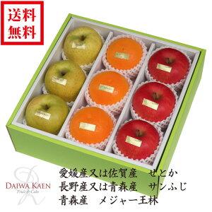 【送料無料】 2月 旬のフルーツ 詰合せ 化粧箱 高級 フルーツ 果物 ギフト 自家用 プレゼント せとか サンふじ りんご 王林 高糖度 [お供え] [お見舞い] [御礼] [お祝い] [内祝い] [贈り物]
