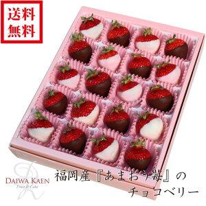 【送料無料】【バレンタイン】 福岡産 あまおう いちご チョコベリー チョコ 化粧箱 高級 フルーツ 果物 ギフト 自家用 プレゼント [お供え] [お見舞い] [御礼] [お祝い] [内祝い] [贈り物]