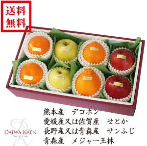 【送料無料】 2月 旬のフルーツ 詰合せ 化粧箱 高級 フルーツ 果物 ギフト 自家用 プレゼント デコポン せとか サンふじ りんご 王林 高糖度 [お供え] [お見舞い] [御礼] [お祝い] [内祝い] [贈り