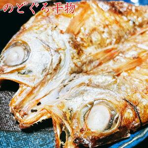 大きい のどぐろ お試し 干物 送料無料 高級魚 のどぐろ 1尾 大きさが自慢 肉厚 浜田 のどぐろ 赤むつ 赤ムツ 干物