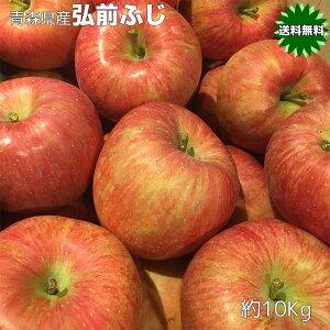 りんご 10Kg 訳あり 青森県産 弘前 ふじ 10kg サイズいろいろ 送料無料