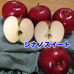 訳あり 秋田県産 シナノスイート 10kg 40玉 秋田 シナノスイート りんご 10Kg お試し