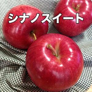 ご家庭用 青森県産 シナノスイート 10kg 送料無料 りんご 10Kg 訳あり お試し シナノスイート 青森