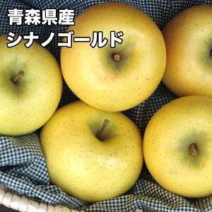 訳あり 青森県 シナノゴールド 10kg 送料無料 りんご 10kg シナノゴールド ご家庭用 クール便配送可 糖度保証 CA貯蔵 当店のりんごは糖度保証 毎日の健康の為に