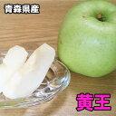 2019年 収穫分 青森県産 黄王 りんご 10kg 送料無料 青森 黄王 青りんご りんご 10Kg 訳あり わけあり
