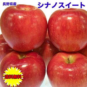 りんご 10kg 訳あり 長野県 シナノスイート 10kg 28〜40個 ご家庭用 送料無料 訳あり お試し りんご シナノスィート お歳暮 ギフト
