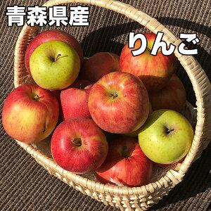 訳あり 青森県産 王林りんご 約10kg