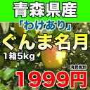 【わけあり】青森県産ぐんま名月 約5kg 幻のりんごの訳ありりんご サイズ不揃い【RCP】