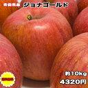 訳あり 青森県 ジョナゴールド 10kg 送料無料 りんご 10kg ジョナゴールド ご家庭用 糖度保証 CA貯蔵 クール便配送可 …