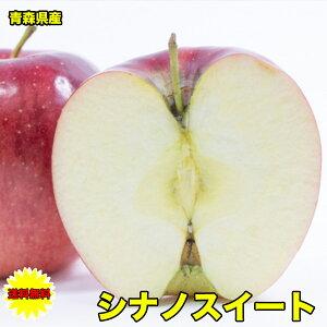 りんご 10Kg 訳あり 送料無料 訳あり 青森県産 シナノスイート 10kg サイズばらばら 傷あり