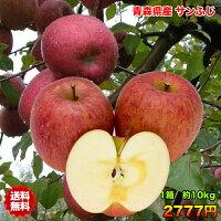 訳あり・青森県産サンふじりんご
