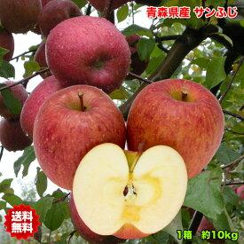 りんご サンふじ りんご 訳あり 10kg 送料無料 常温便 りんご 青森 りんご 10kg りんご サンふじ さんフジ ご家庭用 クール対応 糖度保証 当店のりんごは糖度保証 毎日の健康の為にそのままでもジュースにしても