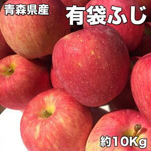 りんご 訳あり クール便 送料無料 青森県産 有袋 ふじ りんご 10kg 糖度保証 サイズいろいろ りんご 10Kg クール便配送