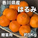 【送料無料】香川県産はるみ 秀品 2Lサイズ 約5kg  (贈答用)※北海道・沖縄県・離島へは別途送料必要【RCP】