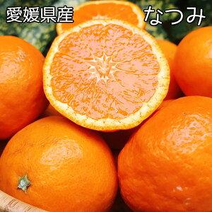 みかん 訳あり なつみ 送料無料 愛媛県 なつみ Mサイズ 5kg みかん お試し 夏に食べるみかん