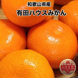 和歌山県 有田みかん ハウスみかん 秀 2.5kg 24玉入 みかん 送料無料 お中元 ギフト