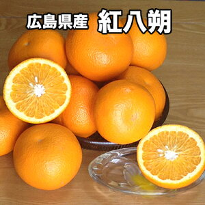 送料無料 広島県産 紅八朔 秀品 Lサイズ 5kg ギフト はっさく