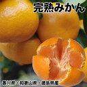 みかん 10kg 送料無料 訳あり 香川県産 または 和歌山県産 または 徳島県産 完熟 みかん 10kg 産地サイズは指定不可 …