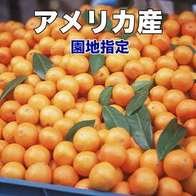 オレンジ ネーブル カリフォルニア産 ネーブルオレンジ 園地指定 糖度保証 5kg 22玉前後